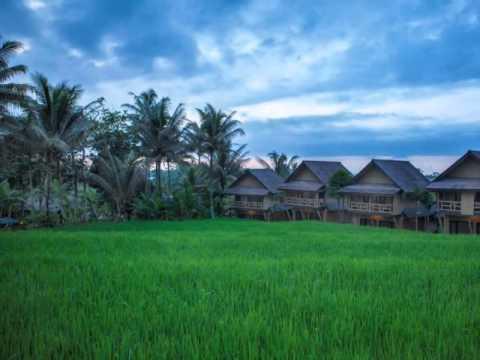 Hotel Murah Di Jl Kaliurang Yogyakarta