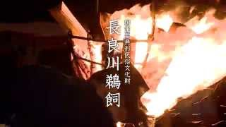 Important Intangible Folk Culture Asset of Nagara River Cormorant Fishing