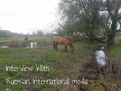 Mijn interview met de internationale Russische media ↠ My interview with the Russian Media