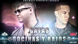 Farruko Feat Daddy Yankee - Gatas, Bosinas y Bajo Www.FlowHoT.NeT