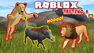 ROBLOX WILD SAVANNAH TESTING A CAN THIS WARTHOG OUTRUN THE LION'S POUNCE!? Sneak Attack!