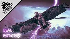Thunderbirds - Legende, Sichtungen, Thesen