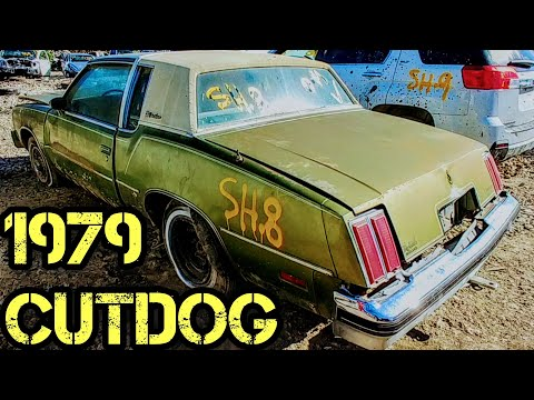 1979 Oldsmobile Cutlass Supreme Brougham Junkyard Find