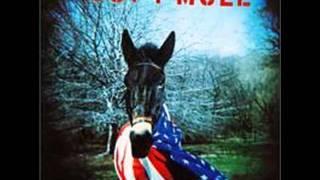 Gov't Mule - Bad little Doggie
