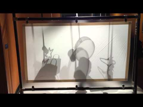 Interactive Rayograph booth