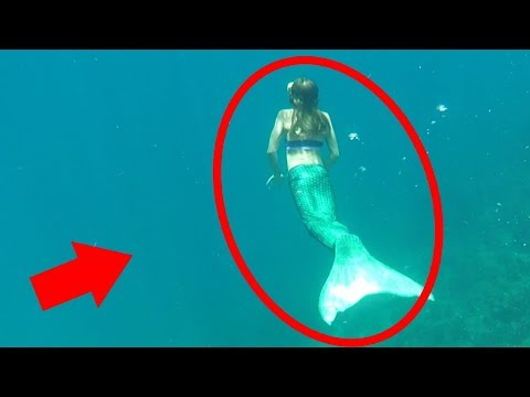 Mermaids + Mysterious Creatures Caught on Tape