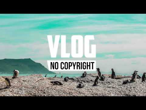 x50 - Penguin (Vlog No Copyright Music)