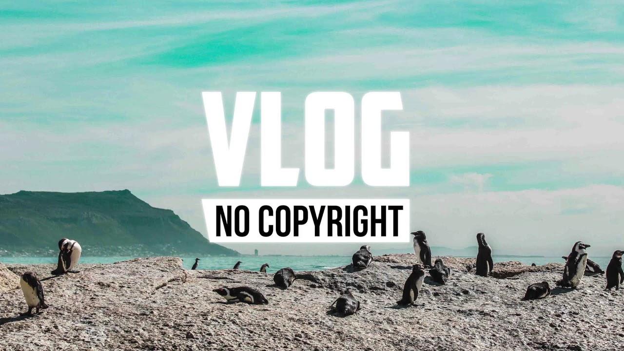 x50 - Penguin (Vlog No Copyright Music)