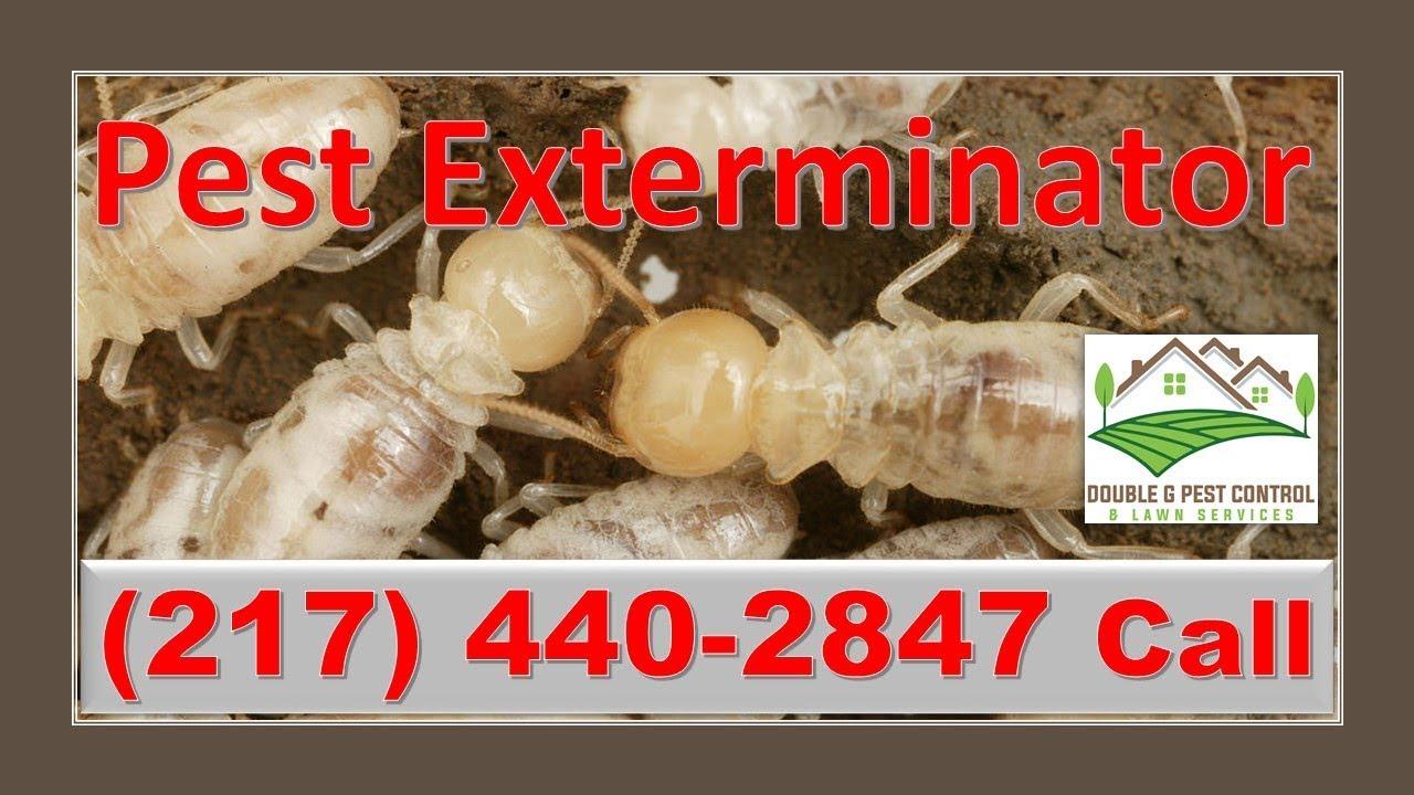 Pest Exterminator Hannibal Missouri