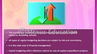 Business Finance- An Overview
