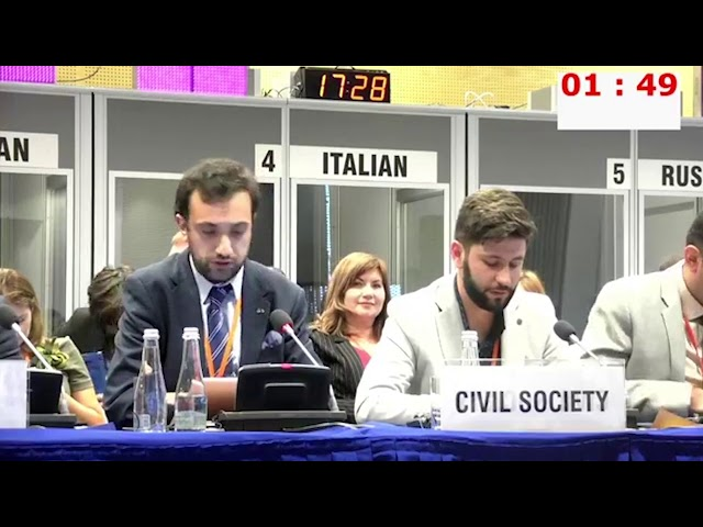 HDIM 2019, Working Session 2 - Daniel Ioannisyan