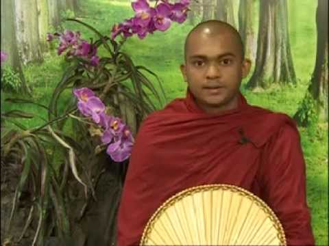 Samatha & Vipassana - Difference btw. Concentration & Insight meditation