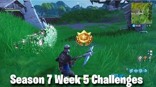 Search between a Giant Rock Man, a Crowned Tomato and an Encircled Tree | Week 5 Challenges Fortnite