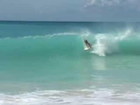 Surfing around St. Martin / St. Martin in the Caribbean.  http://www.windyreef.com