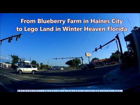 Driving from Blueberry Farm in Haines City to Lego Land in Winter Heaven Florida