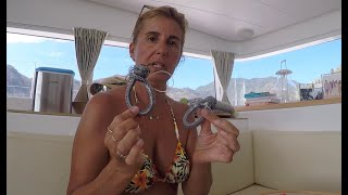 Boat LIFE. Soft SHACKLES. Sailing Ocean Fox #61