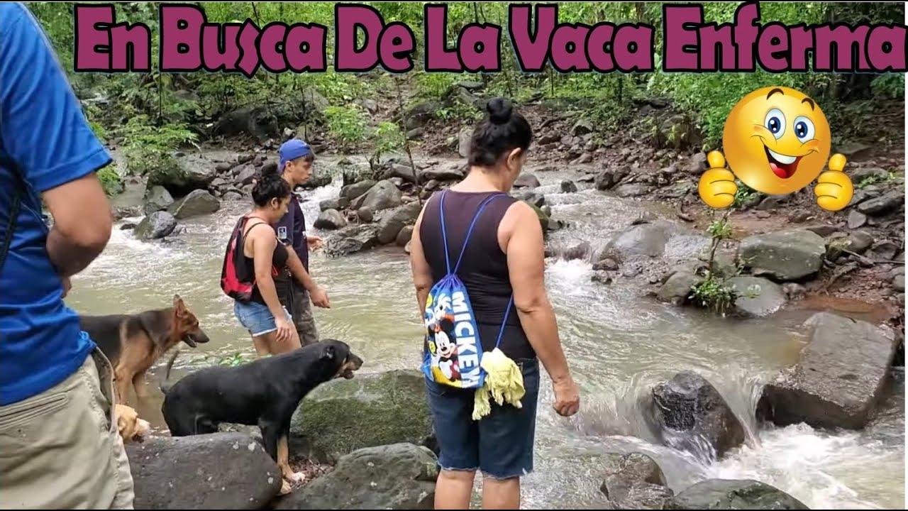 -Cruzando El Rio Para Ir En Busca De La Vaca De David💪Se Nos Enverdeció El Entorno-P2