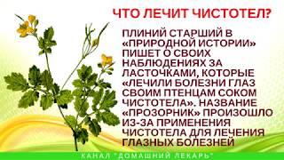 Что лечит чистотел?  - Домашний лекарь - выпуск №64