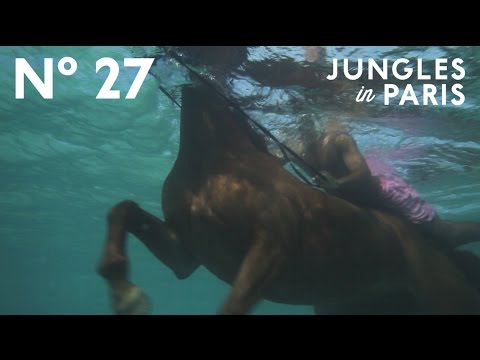 Swimming Horses of the Caribbean (Montego Bay, Jamaica)