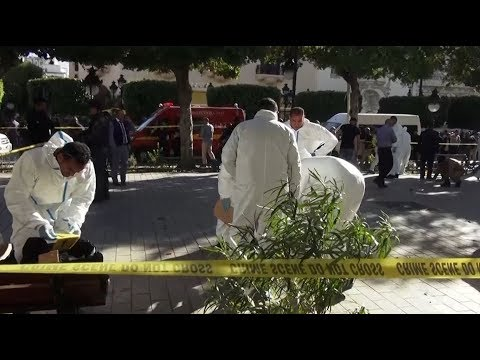 Tunis suicide bomber injures nine people