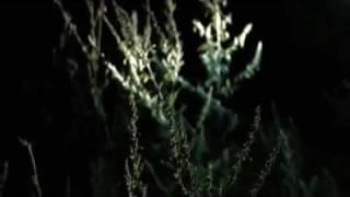 Ноггано - Мути без спешки ( Клип) HD