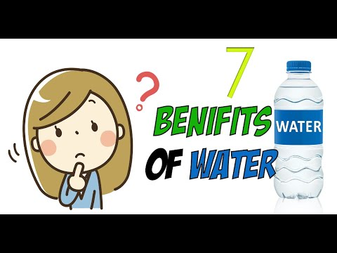 7 Reasons why you MUST drink at least 1.5 liters of water PER DAY | Digital Dreaming
