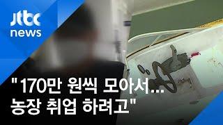 """'모터보트 타고 320㎞' 밀입국 이유는 """"양파 농장 …"""