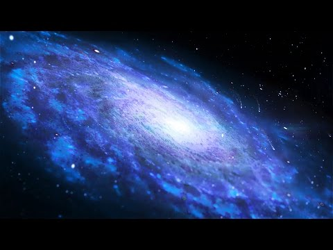 The largest galaxies in the universe