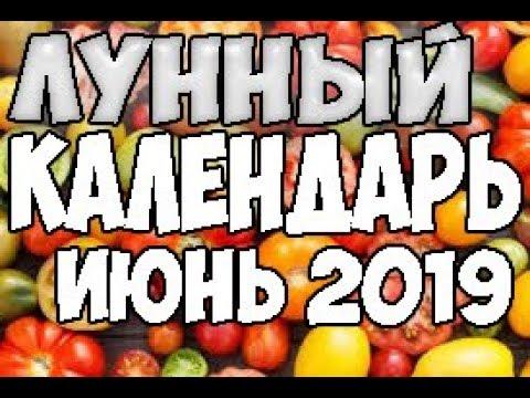 ЛУННЫЙ КАЛЕНДАРЬ.БЛАГОПРИЯТНЫЕ ДНИ ДЛЯ ПОСАДКИ ИЮНЬ 2019!!!