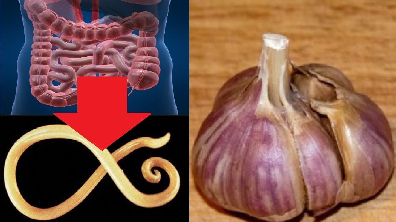 Mangiare aglio a stomaco vuoto fa bene? - Vivere più sani
