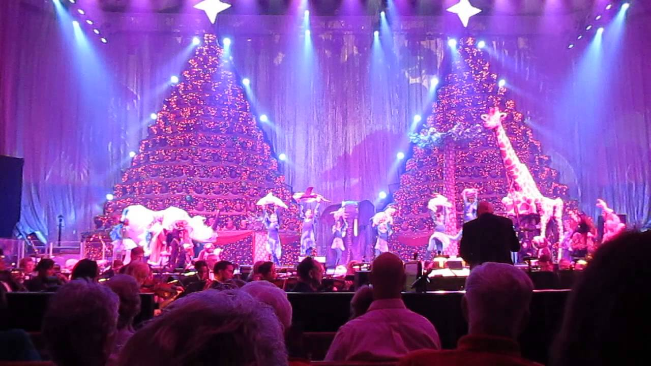 Singing Christmas Tree Orlando.The Song I Am From The Singing Christmas Trees At First Baptist Orlando