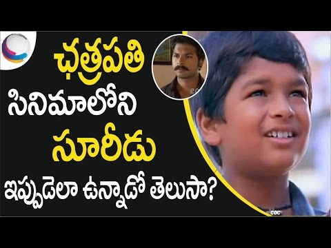 Prabhas Chatrapathi Movie Child Actor Who Played SURIDU Latest Photos | Child Artists Then and Now
