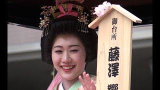 2018.3.31 静岡祭りのメインイベント「大御所花見行列」は、「ここ駿府...