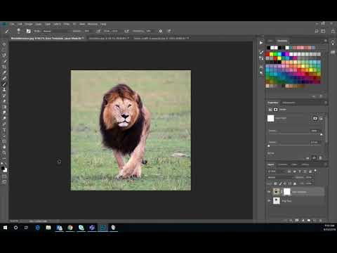Adobe Photoshop: Layer Mask Tutorial (Update!) thumbnail