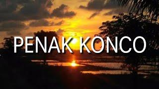 Penak Konco Guyon Waton Cover Lky Ft Cantika