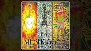 Meshuggah - Future Breed Machine (Remastered)
