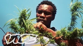 Swaziland: Gold Mine of Marijuana (Part 2/2)