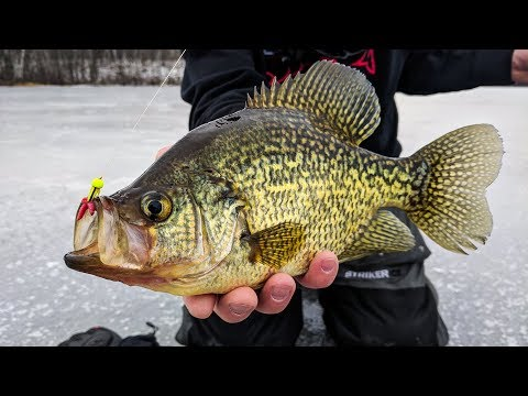 Upper Peninsula Panfish - In-Depth Outdoors Season 12, Episo