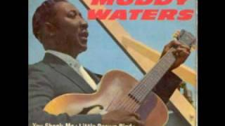 Muddy Waters - You need love - 1963
