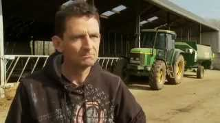 HerdInsights - used by dairy farmers across Ireland