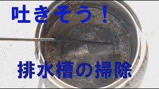 業者に頼むと2万円以上する、排水パイプと汚水槽の掃除を自分でしてみた。ケルヒャー高圧洗浄機パイプクリーニングホースで清掃【ちょっと汚い】 thumbnail