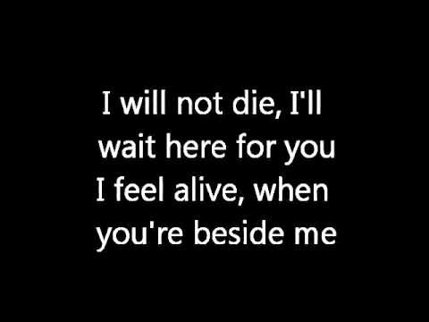 Three Days Grace - Time of Dying (lyrics)