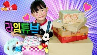 팬으로 부터 온 시크릿 서프라이즈 장난감 선물상자?? Surprise Toys Box LimeTube & Toy 라임튜브
