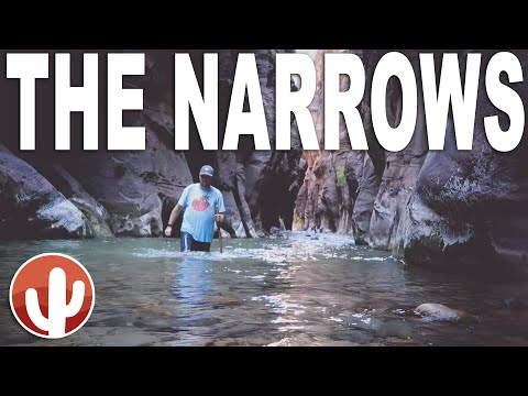 A Completionist's Guide to Hiking the Narrows Bottom Up | Zion National Park