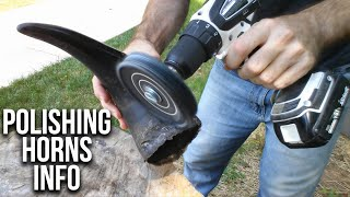 How To Polish Cow and Bison Horns