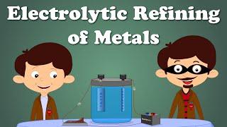 Electrolytic Refining of Metals | #aumsum