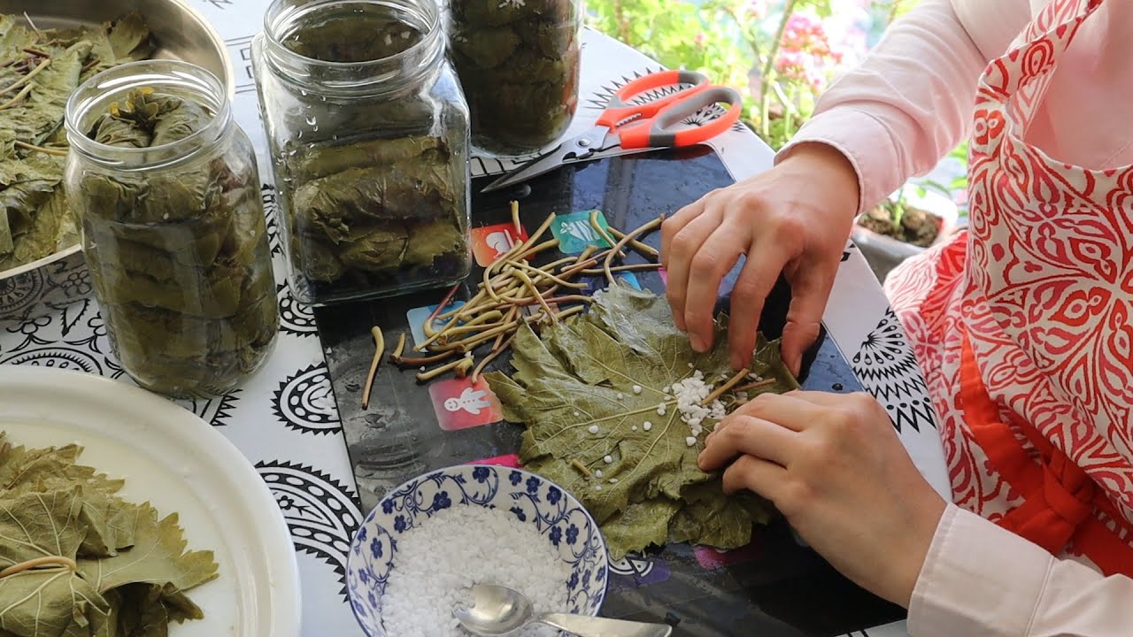 How To Preserve Grape Leaves In Two Ways & Tips By Aysenur Altan