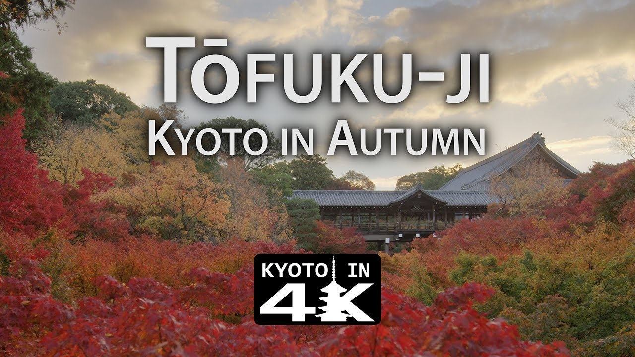 Beautiful Kyoto Autumn Tōfukuji K YouTube - This amazing image is being called the most beautiful photo of kyoto ever