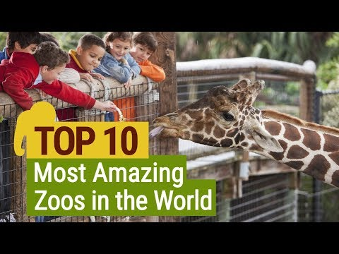 10 Top 10 Amazing Zoos in the World | FactRetriever