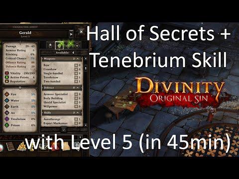 Divinity - Original Sin: Hall of Secrets + Tenebrium Skill with Level 5